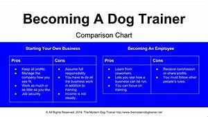 becoming a dog trainer start a business or get a job With become a dog trainer