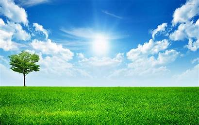 Sky Nature Sunny Wallpapers Grass Field Sun