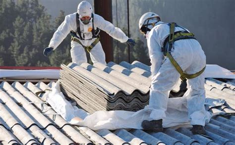 yale tribune  global outlook   dying asbestos