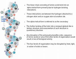 Hydrogen bond and features