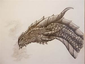 dragon/smaug- The Hobbit by moonsilver18863 | The Hobbit ...