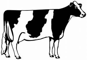 Holstein cliparts