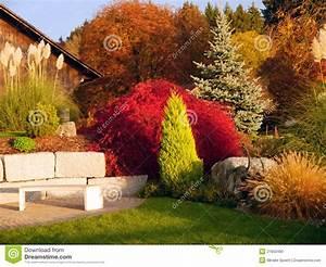 Bäume Für Den Garten : bunter garten der b ume stockfoto bild 21953490 ~ Lizthompson.info Haus und Dekorationen
