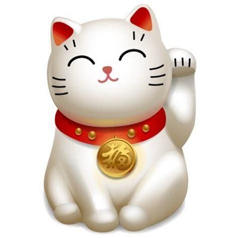 maneki neko le chat porte bonheur aikido mickael martin
