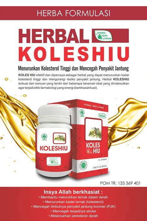 herbal  kolesterol herbal holistik murah hati