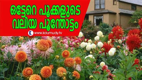 raveendrans flower garden  kerala haritham sundaram