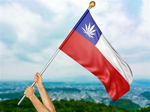 Chile's Progressive Medical Cannabis Policy: A Story of ...