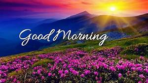 Good Morning Wi... Morning Mountain Quotes
