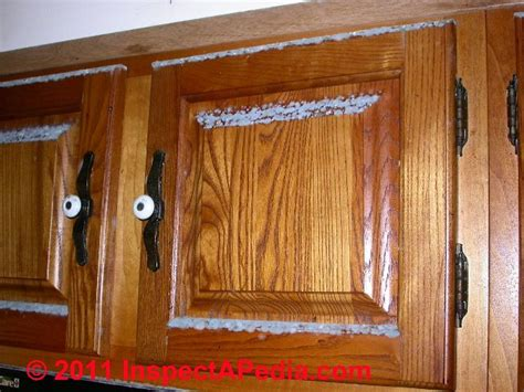 Cabinet Mold by Photographs Of Mold Growth On Different Materials Mold On