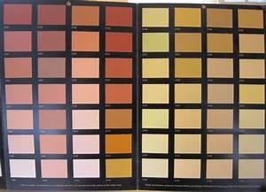 Badigeon Chaux Exterieur : bien nuancier peinture facade exterieure 1 isol naturel ~ Premium-room.com Idées de Décoration