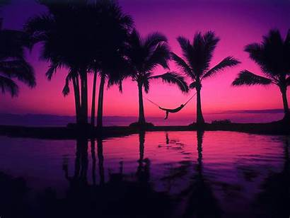 Purple Background Advertisement