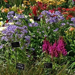Acheter Des Plantes : o acheter ses plantes magie des jardins ~ Melissatoandfro.com Idées de Décoration