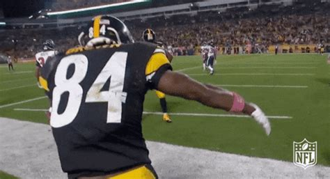 pittsburgh steelers gif  nfl find share  giphy