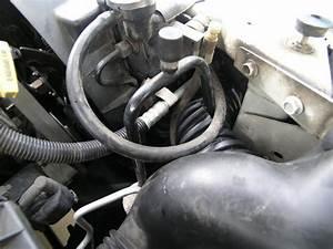 Dodge Dakota Ac Relay Wiring Diagram Pictures