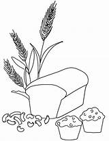 Coloring Wheat Bread Grain Pages Grains Whole Pasta Printable Macaroni Muffin Clipart Drawing Colouring Template Breads Kindergarten Loaf Nutrition Drawings sketch template