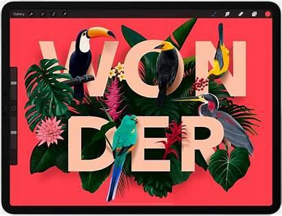 Procreate Text App Ipad Illustration Typography Features