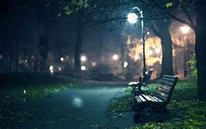 Park Benches Full HD Wallpaper and Background   2560x1600 ...