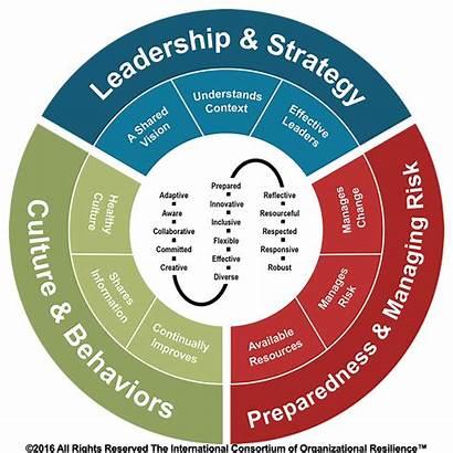 Resilience Organizational Principles Build Attributes Framework Culture