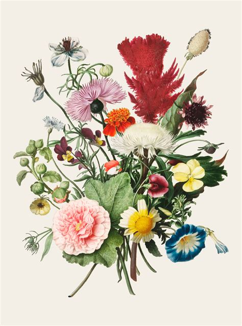 Vintage illustration of Bouquet of Flowers - Download Free ...