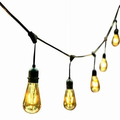 Bulbs Stringers Electrical