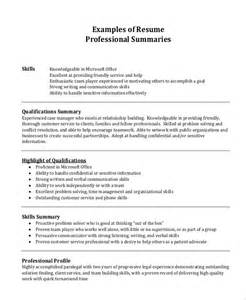 resume summary exles for it professionals professional resume exle 7 sles in pdf