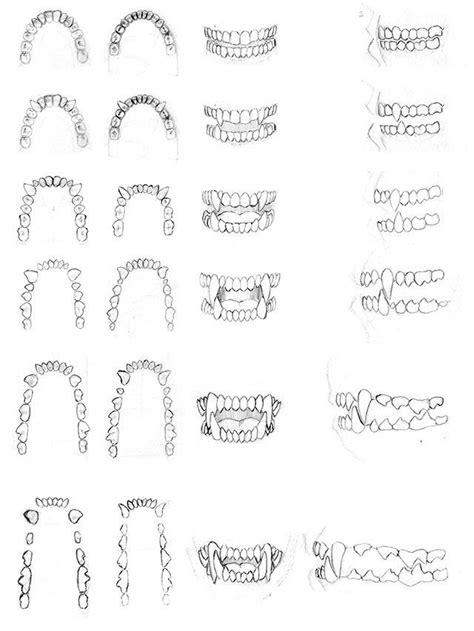 teeth studies   dirktiede httpdirktiede