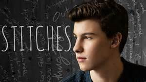 Shawn Mendes Stitches Song