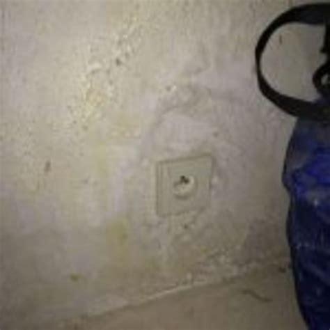 salpetre mur interieur gallery of duune chaux with salpetre mur interieur pensezvous que