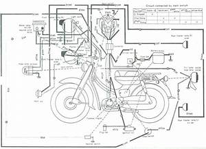 Honda Zoomer Wiring Diagram