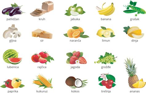 Basic Croatian Vocabulary Food, Fruit And Vegetables