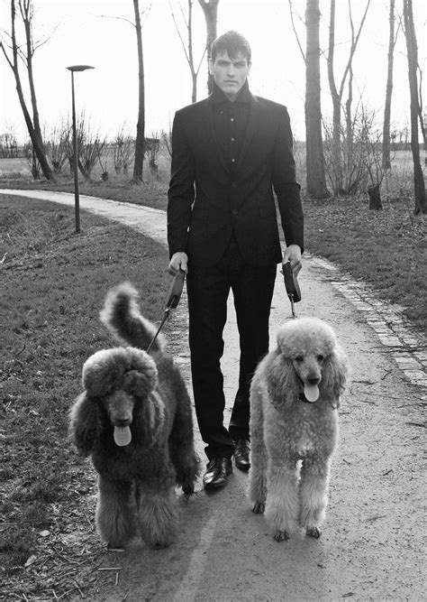 Sacha and the poodles by AntonellaB   Poodle, Cute dogs, Dogs