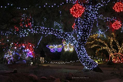 when does zoo lights start zoolights display at the zoo