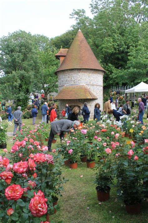 chambre d hote veules les roses chambre d 39 hôtes à veules les roses en normandie location