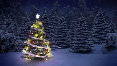 Christmas Tree Presents Trees Snow Night Want