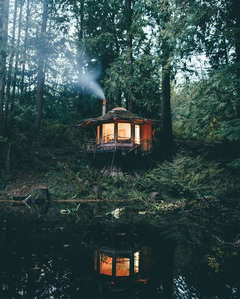 House In The Forest by A Cabin In The Woods In Washington P L A C E S