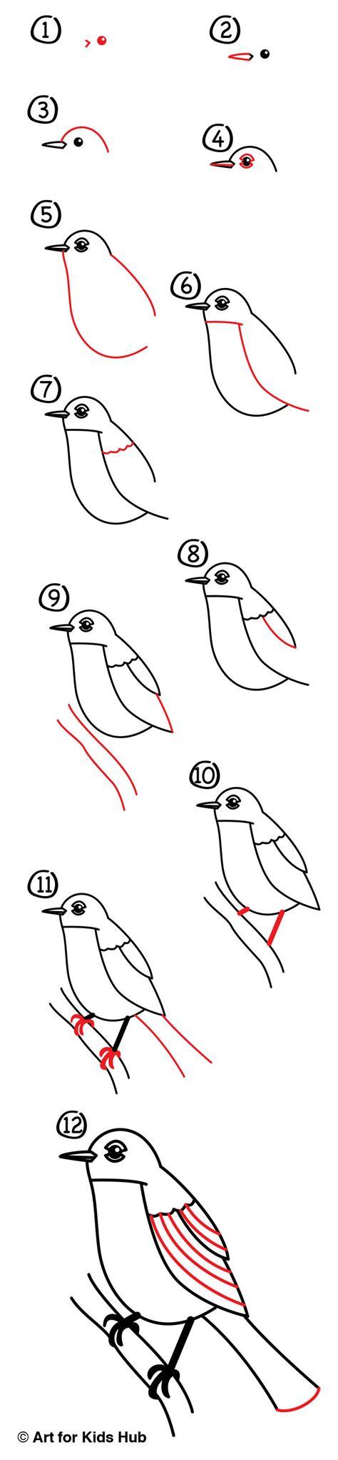 draw  robin bird realistic art  kids hub