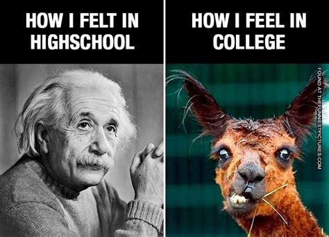 highschool vs college funniest pictures