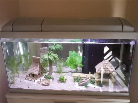 comment nettoyer les decors d aquarium d 233 marrage d aquarium 80l aquariophilie org