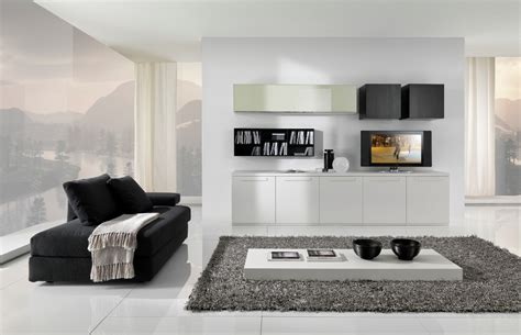 modern black  white furniture  living room
