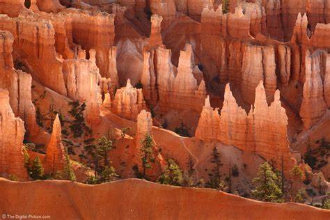 hoodoos  bryce canyon national park