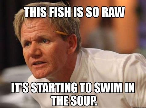 Gordon Ramsay Meme Generator - gordon meme 100 images hilarious gordon ramsey memes picture compilation youtube life after