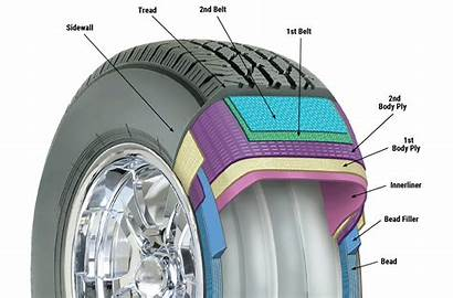 Tire Diagram Tires Cutaway Many Manufacturers