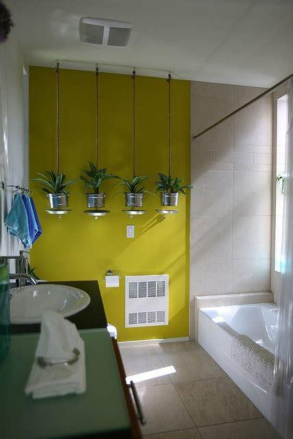 tanaman hiaju  bunga  desain kamar mandi desain
