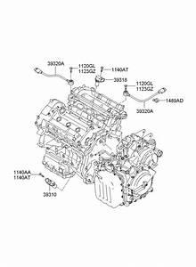 2007 Hyundai Azera Cylinder Head  U0026 Cover