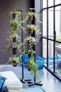 Kletterpflanzen Für Balkon : balkon dekorieren tipps und tricks f r mehr platz ~ Buech-reservation.com Haus und Dekorationen