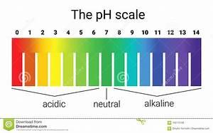 Ph Du Sol : chelle de ph quilibre infographic d 39 acide base chelle ~ Melissatoandfro.com Idées de Décoration