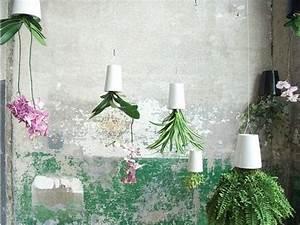 Boskke Sky Planter : boskke sky planter youtube ~ Orissabook.com Haus und Dekorationen
