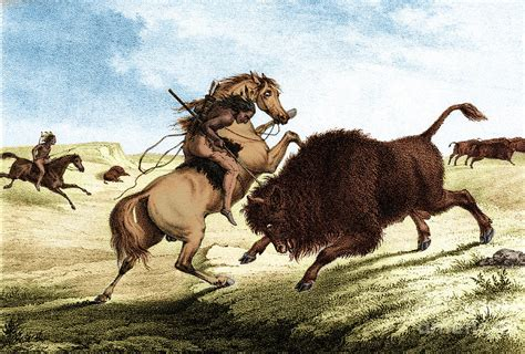 Native American Indian Buffalo Hunting Photograph By Photo