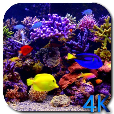 amazoncom aquarium  video  wallpaper appstore