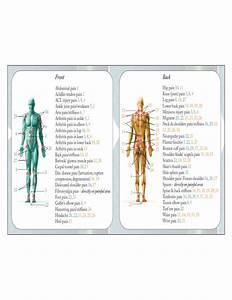 Acupressure Chart Back And Front Pressure Point Chart Free Download